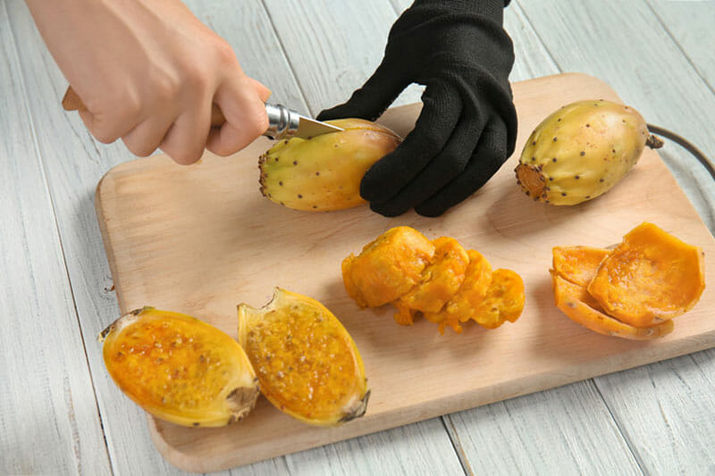 cutting and peeling a cactus fruit